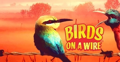 Nowy wideo slot Betsson - Birds on a Wire